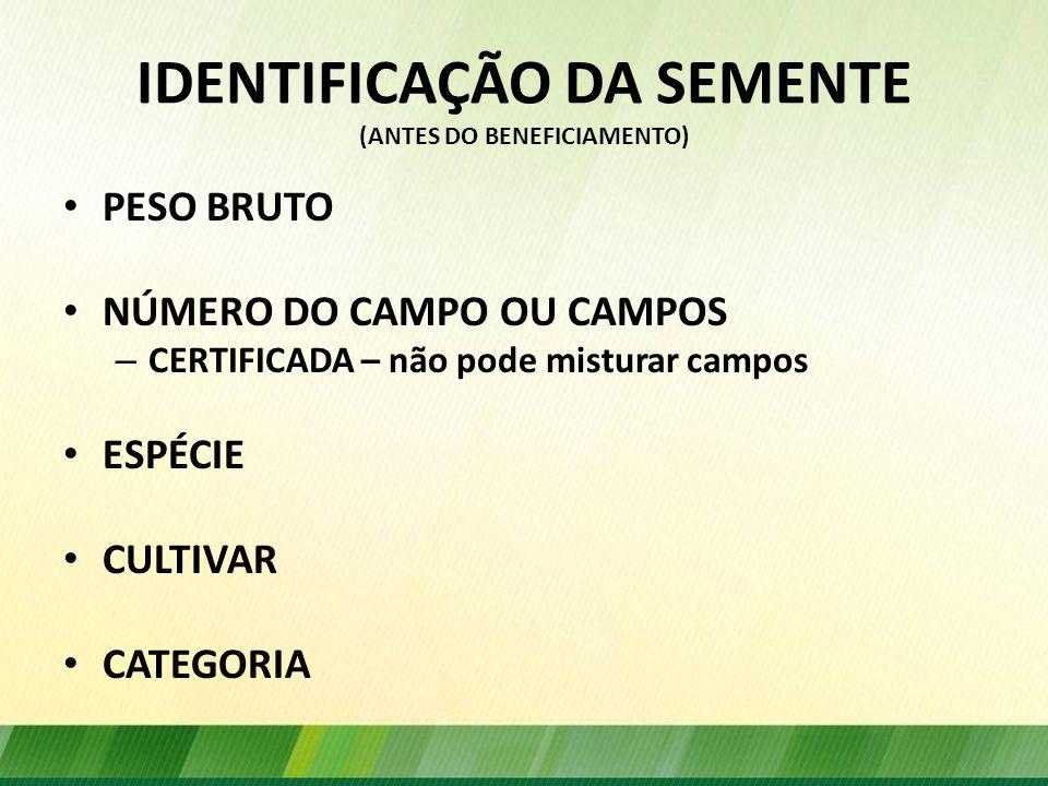 IDENTIFICAÇÃO DA SEMENTE (ANTES DO BENEFICIAMENTO)