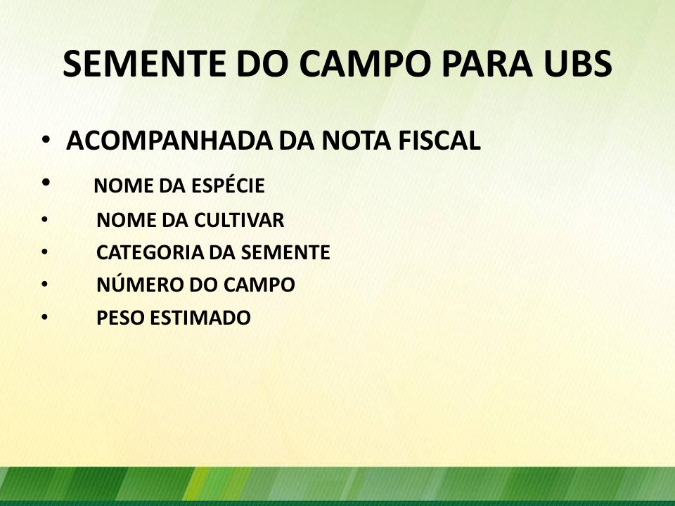 SEMENTE DO CAMPO PARA UBS