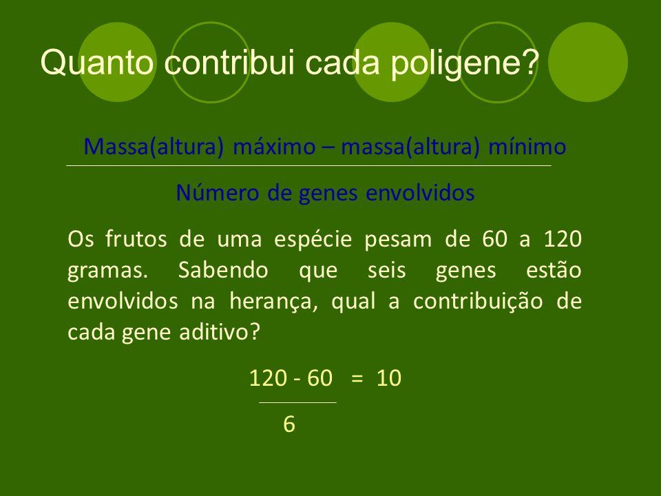 Quanto contribui cada poligene