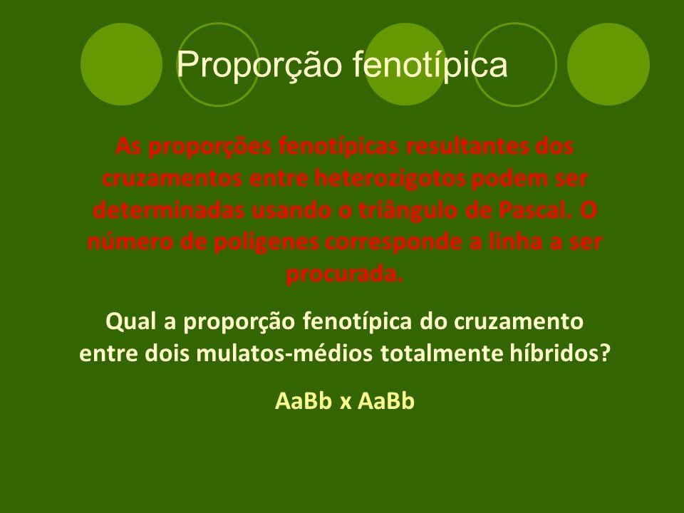 Proporção fenotípica