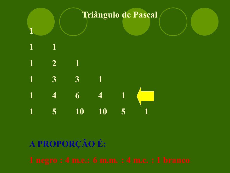Triângulo de Pascal 1. 1 1. 1 2 1. 1 3 3 1. 1 4 6 4 1.