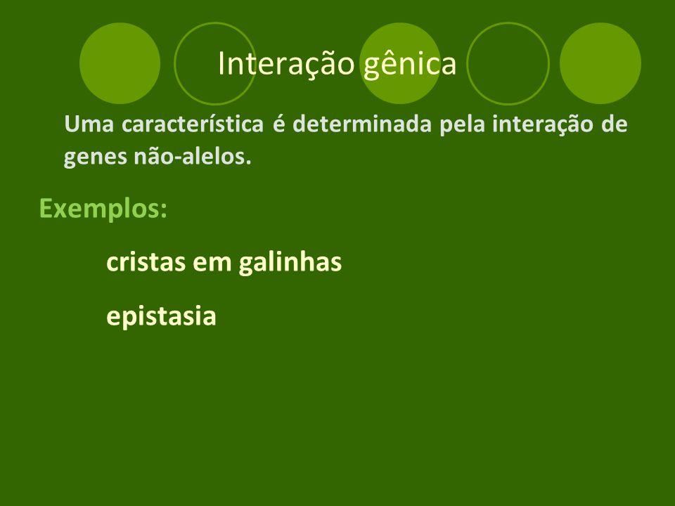 Interação gênica Uma característica é determinada pela interação de genes não-alelos.