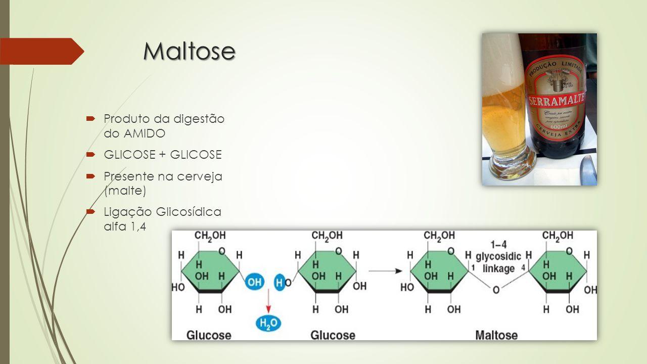 Maltose Produto da digestão do AMIDO GLICOSE + GLICOSE