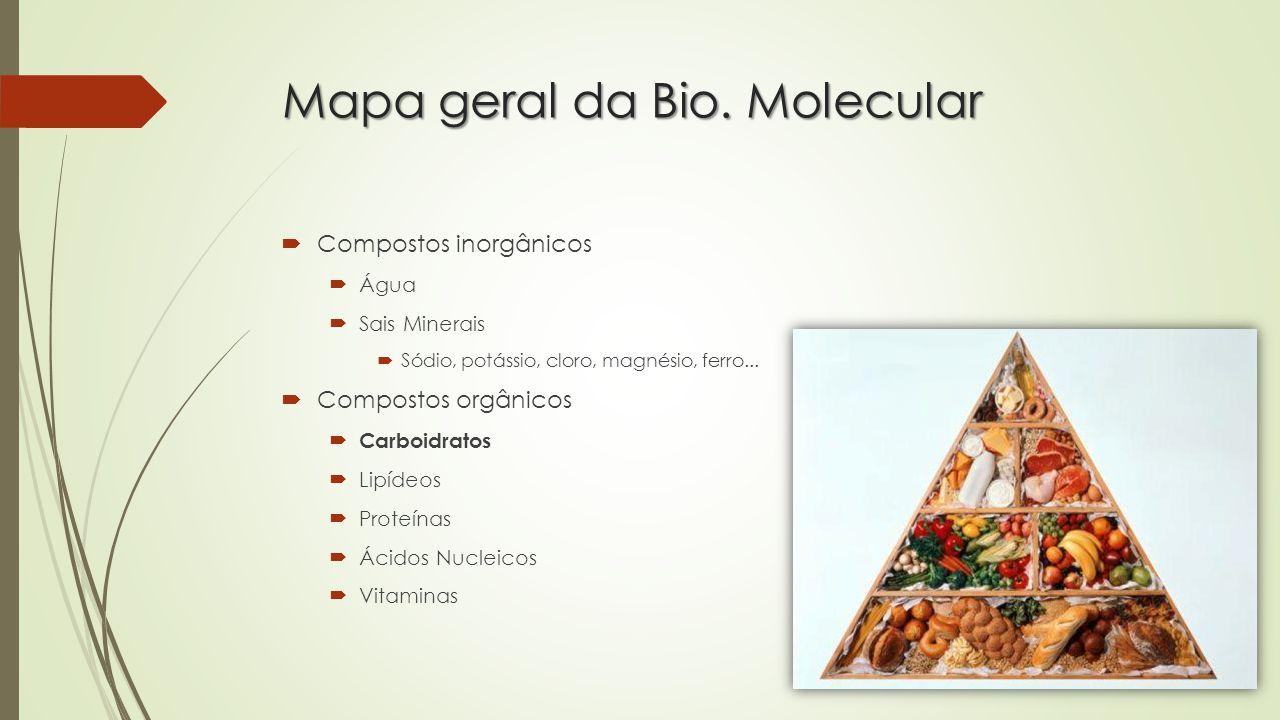Mapa geral da Bio. Molecular