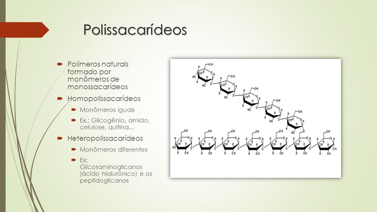 Polissacarídeos Polímeros naturais formado por monômeros de monossacarídeos. Homopolissacarídeos.
