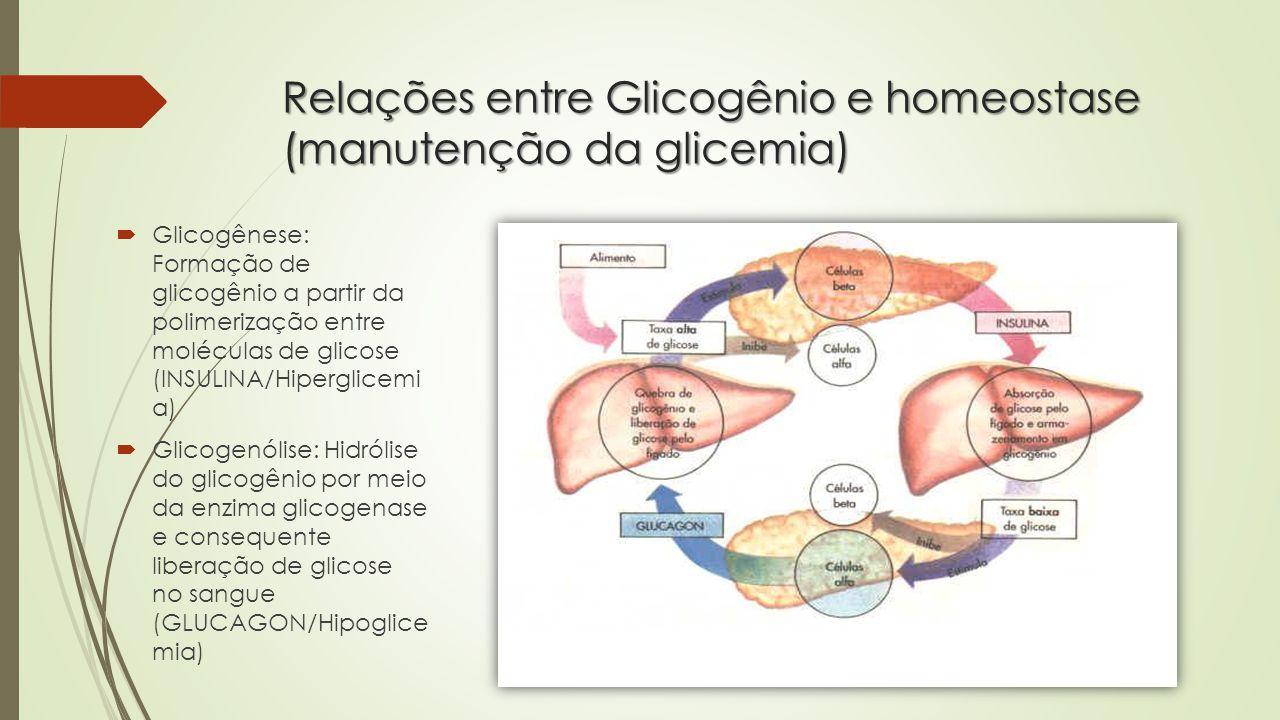 Relações entre Glicogênio e homeostase (manutenção da glicemia)