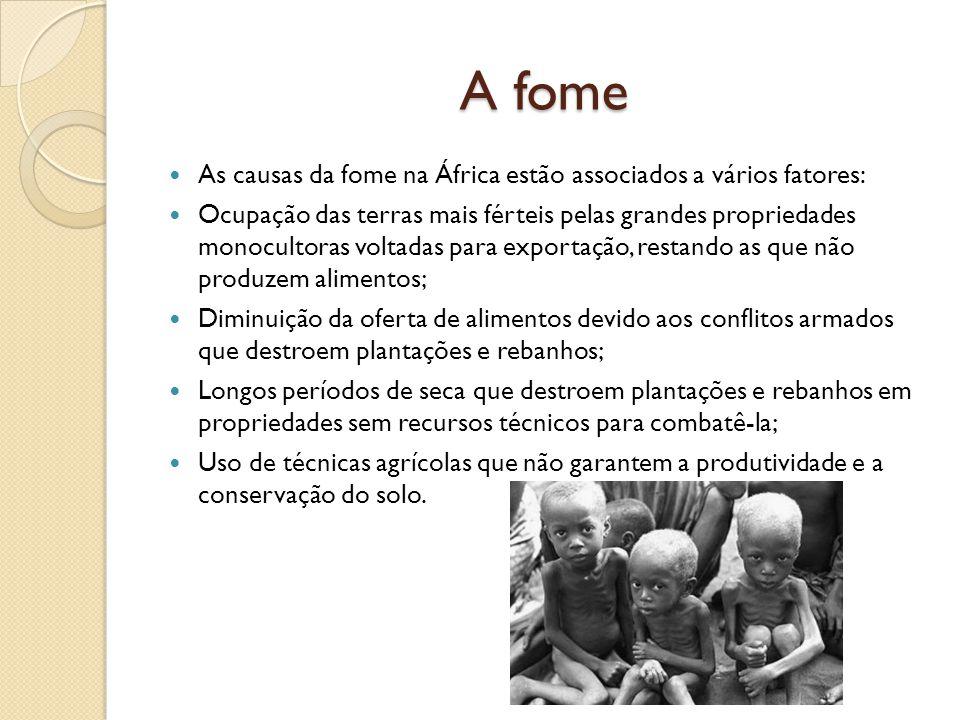 A fome As causas da fome na África estão associados a vários fatores: