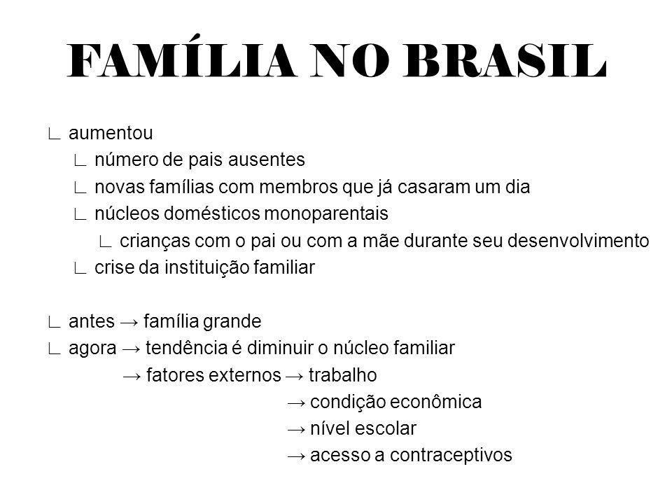 FAMÍLIA NO BRASIL