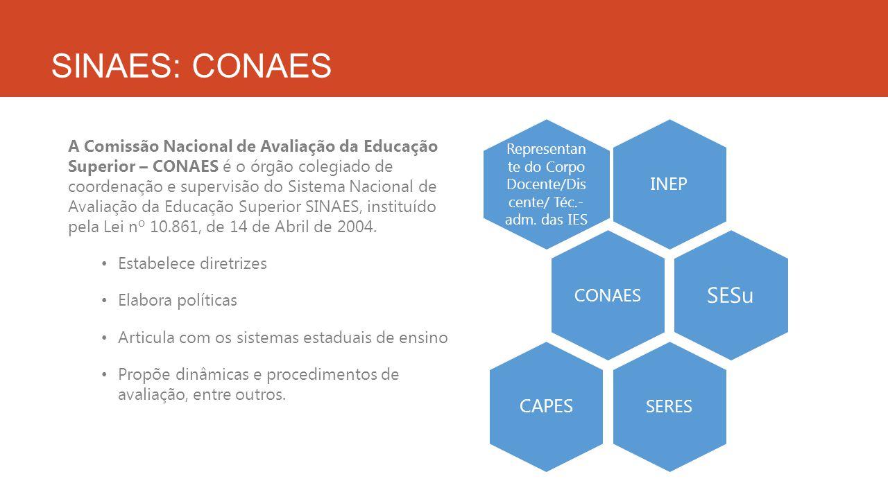 Representante do Corpo Docente/Discente/ Téc.-adm. das IES
