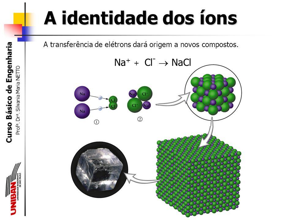 A identidade dos íons Na+ + Cl-  NaCl