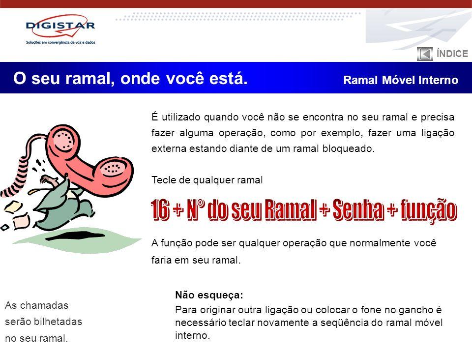 16 + N° do seu Ramal + Senha + função