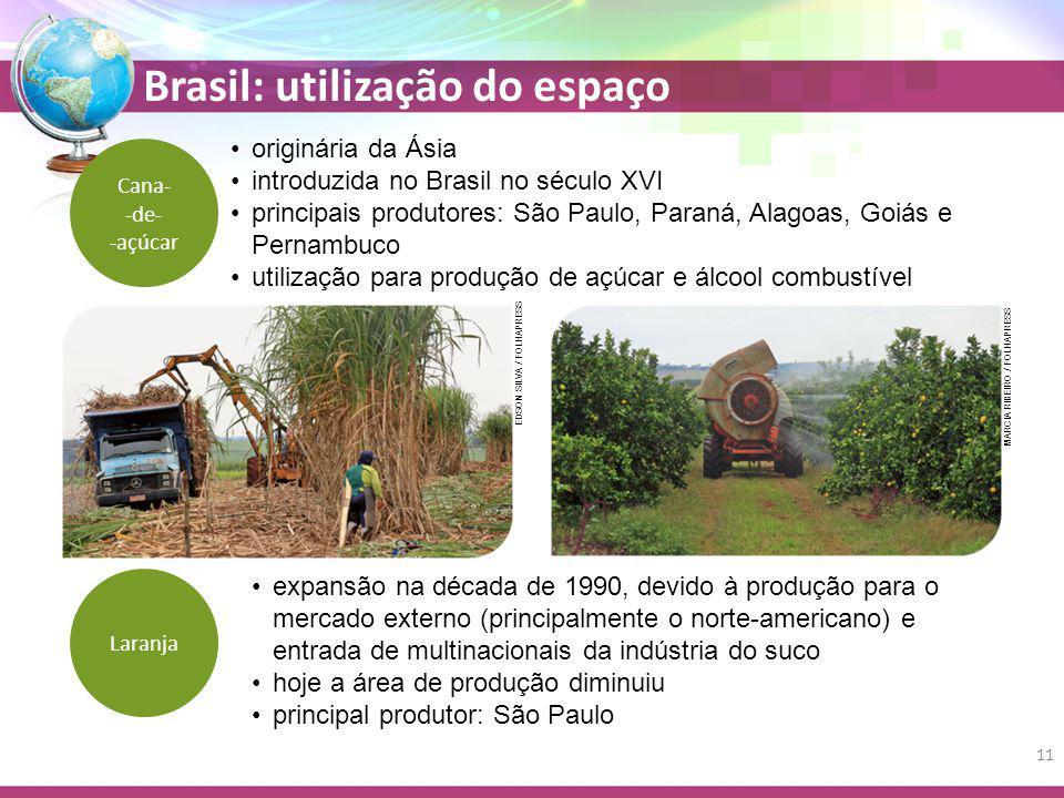 introduzida no Brasil no século XVI