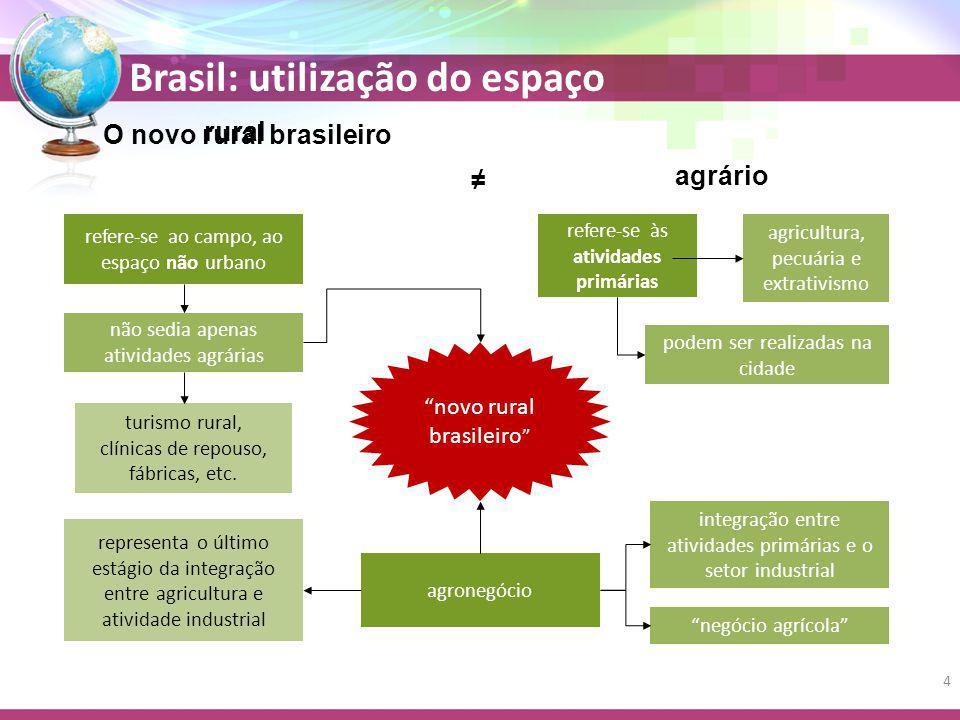 O novo rural brasileiro