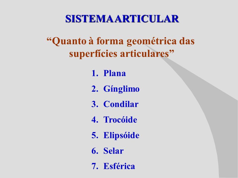 Quanto à forma geométrica das superfícies articulares