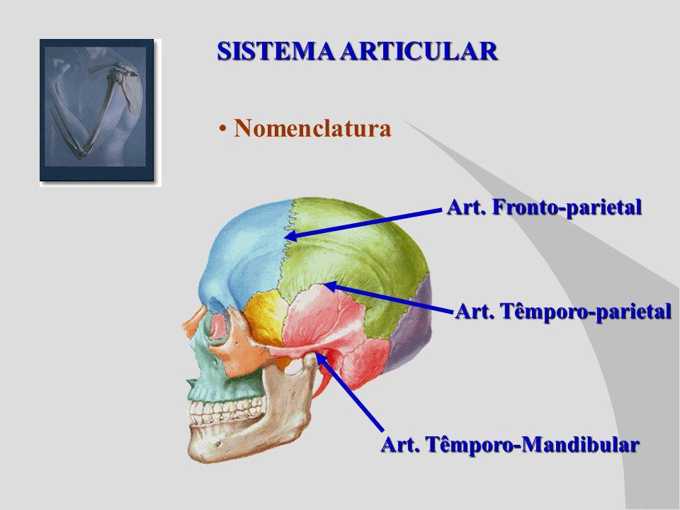 SISTEMA ARTICULAR Nomenclatura Art. Fronto-parietal