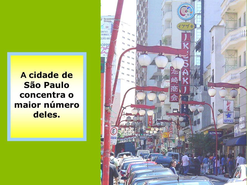 A cidade de São Paulo concentra o maior número deles.