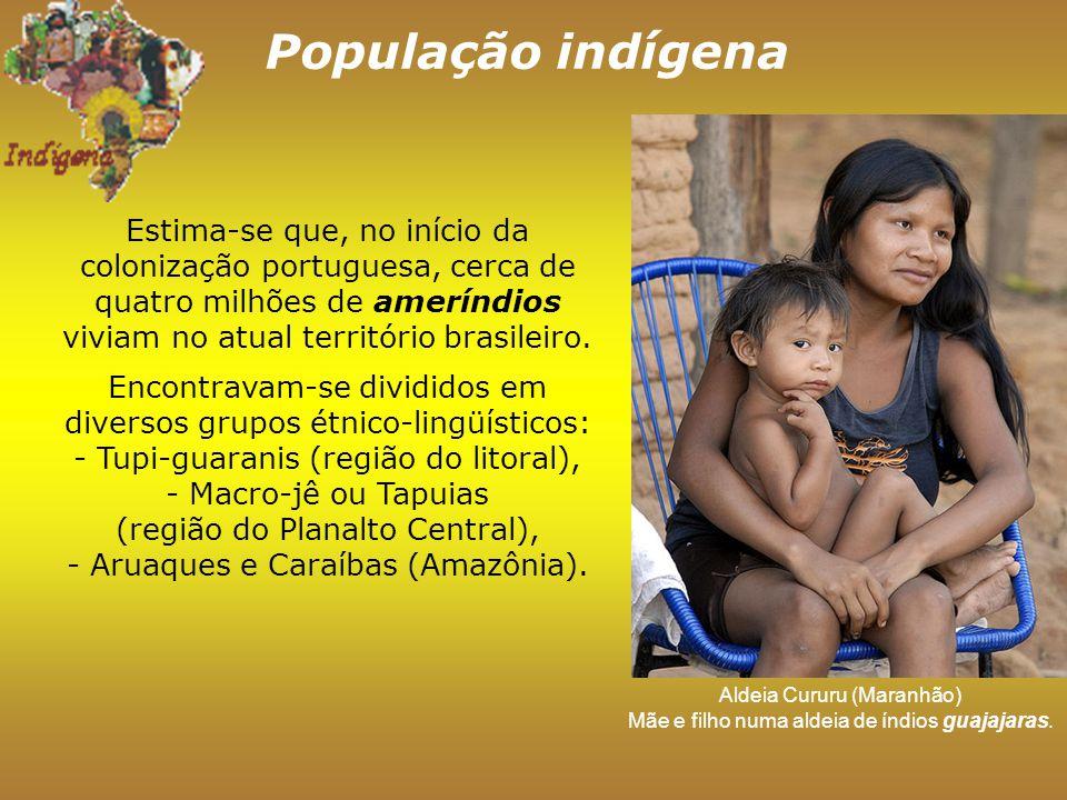 População indígena Estima-se que, no início da colonização portuguesa, cerca de quatro milhões de ameríndios viviam no atual território brasileiro.
