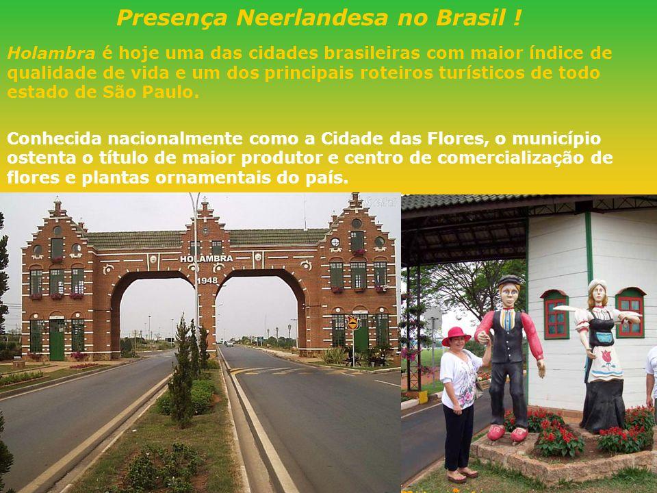 Presença Neerlandesa no Brasil !