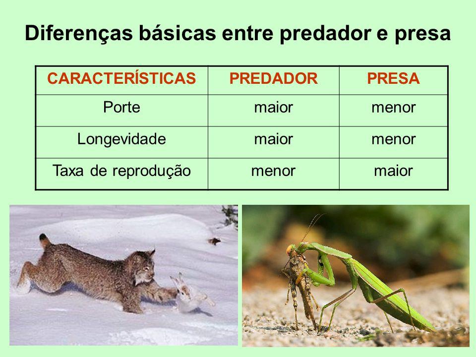 Diferenças básicas entre predador e presa