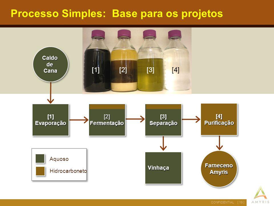 Processo Simples: Base para os projetos