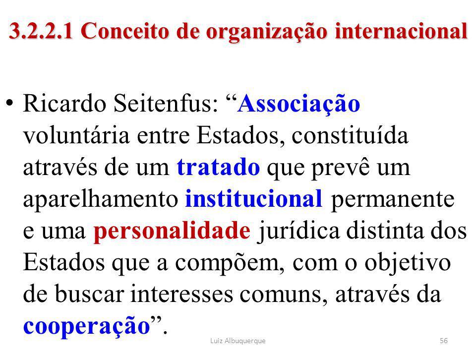 3.2.2.1 Conceito de organização internacional