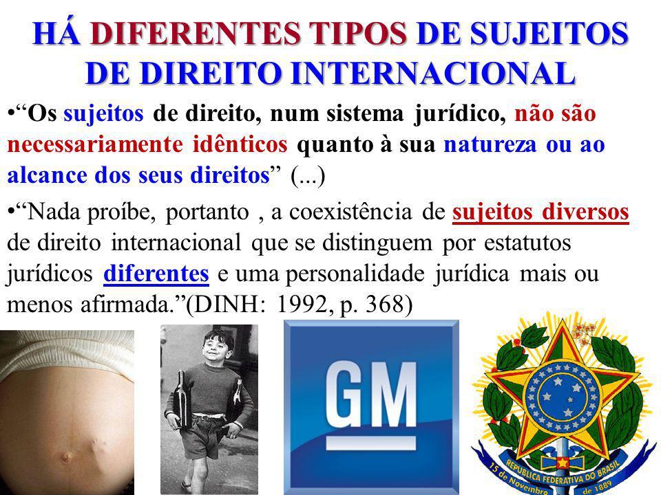 HÁ DIFERENTES TIPOS DE SUJEITOS DE DIREITO INTERNACIONAL