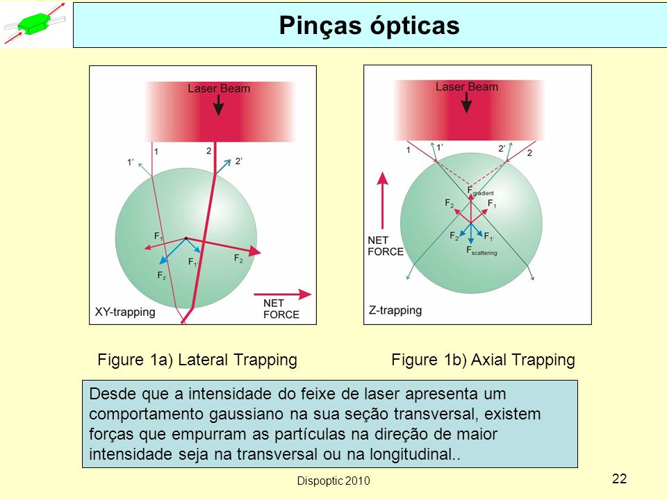 Pinças ópticas Figure 1a) Lateral Trapping Figure 1b) Axial Trapping