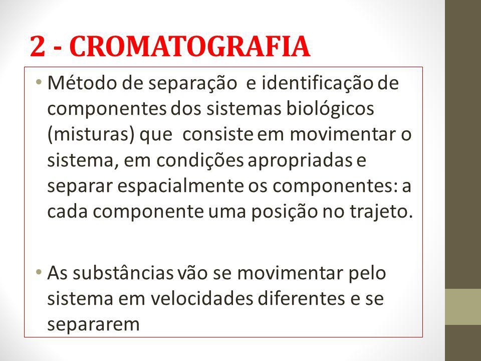 2 - CROMATOGRAFIA