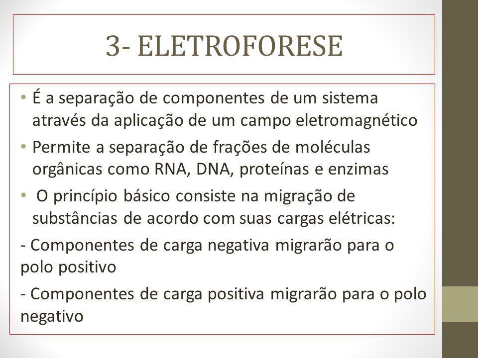 3- ELETROFORESE É a separação de componentes de um sistema através da aplicação de um campo eletromagnético.