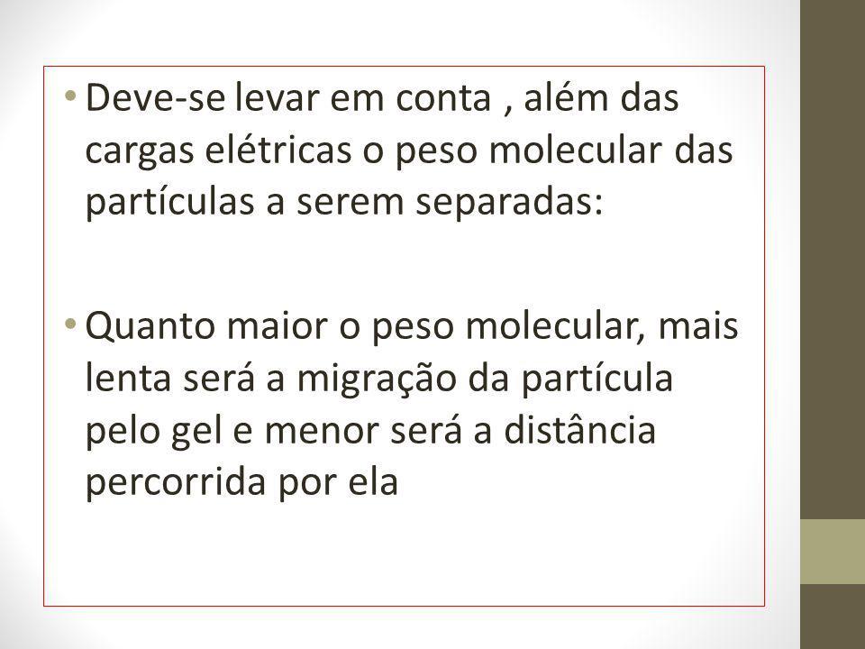 Deve-se levar em conta , além das cargas elétricas o peso molecular das partículas a serem separadas: