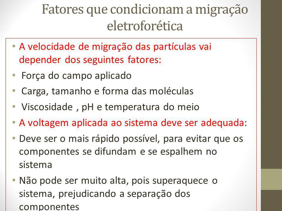Fatores que condicionam a migração eletroforética