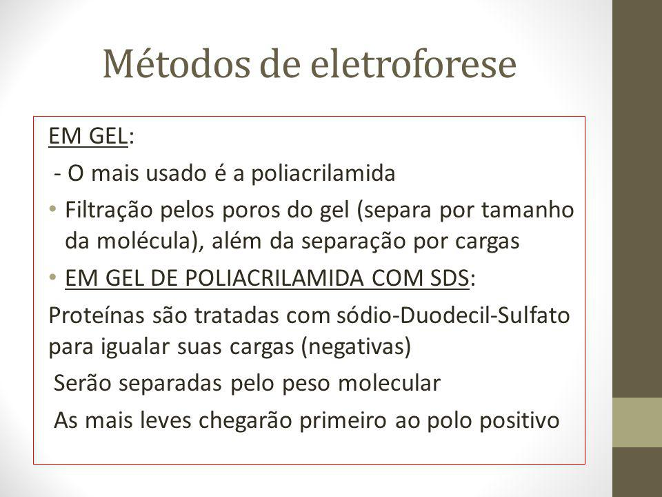 Métodos de eletroforese