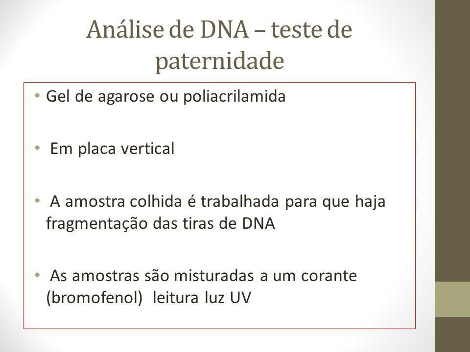 Análise de DNA – teste de paternidade