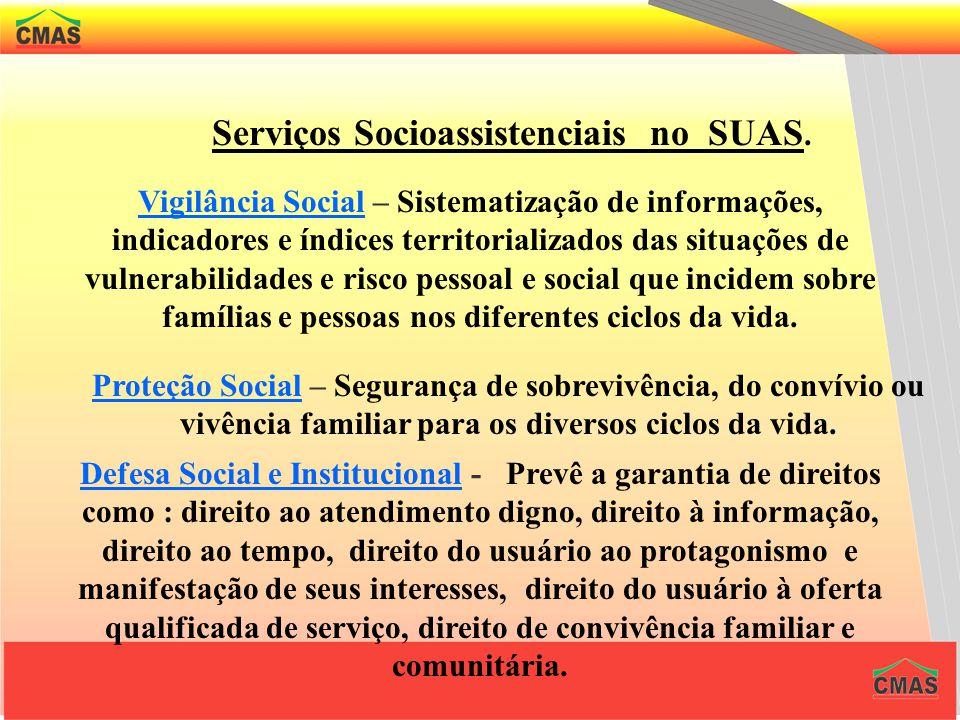 Serviços Socioassistenciais no SUAS.