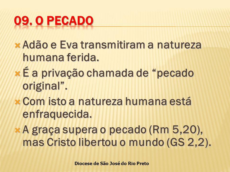 09. O PECADO Adão e Eva transmitiram a natureza humana ferida.