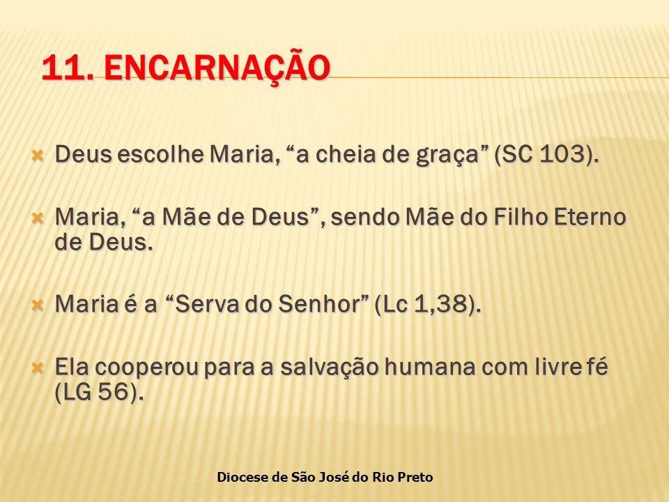 11. ENCARNAÇÃO Deus escolhe Maria, a cheia de graça (SC 103).