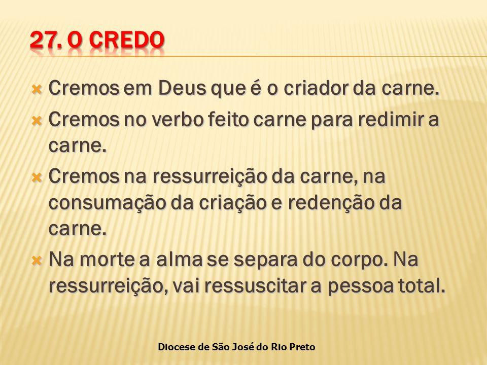 27. O CREDO Cremos em Deus que é o criador da carne.