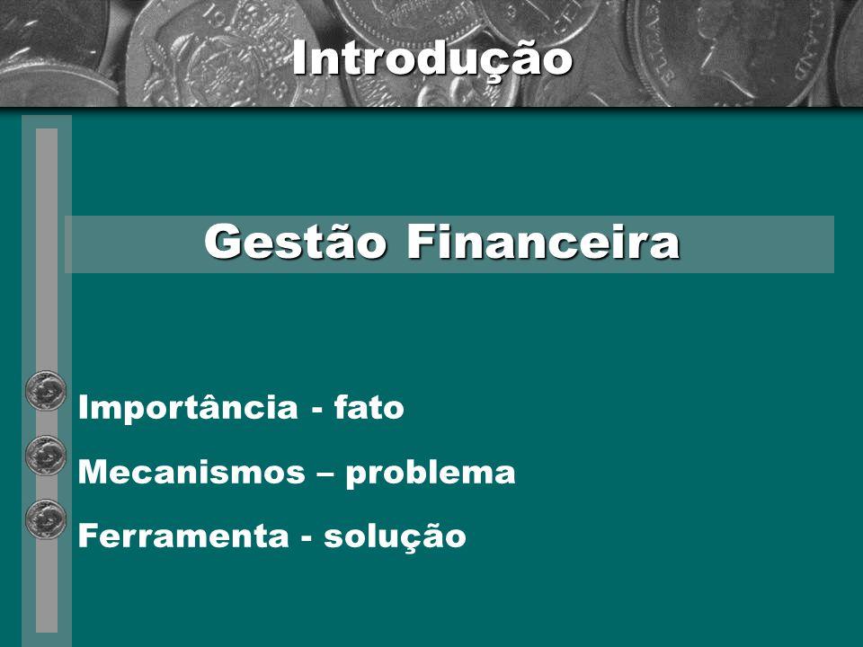 Introdução Gestão Financeira Importância - fato Mecanismos – problema