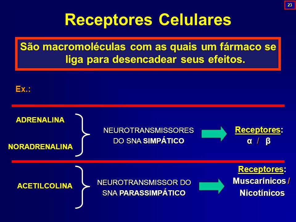 23 Receptores Celulares. São macromoléculas com as quais um fármaco se liga para desencadear seus efeitos.