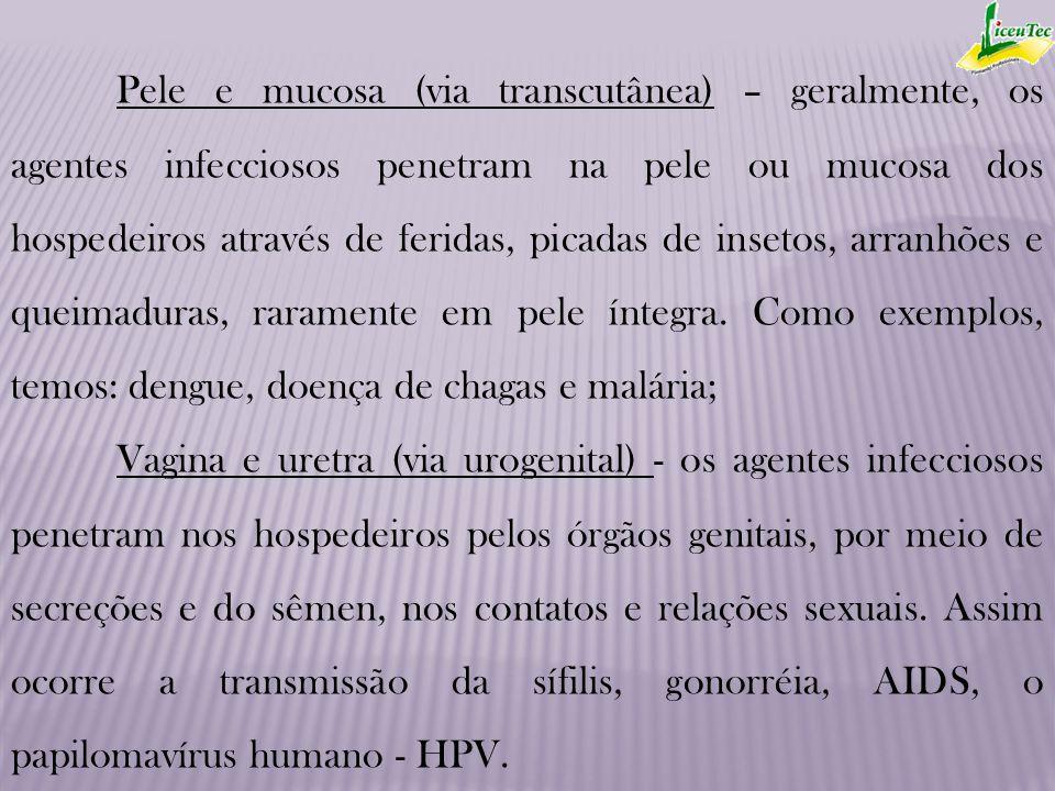 Pele e mucosa (via transcutânea) – geralmente, os agentes infecciosos penetram na pele ou mucosa dos hospedeiros através de feridas, picadas de insetos, arranhões e queimaduras, raramente em pele íntegra. Como exemplos, temos: dengue, doença de chagas e malária;