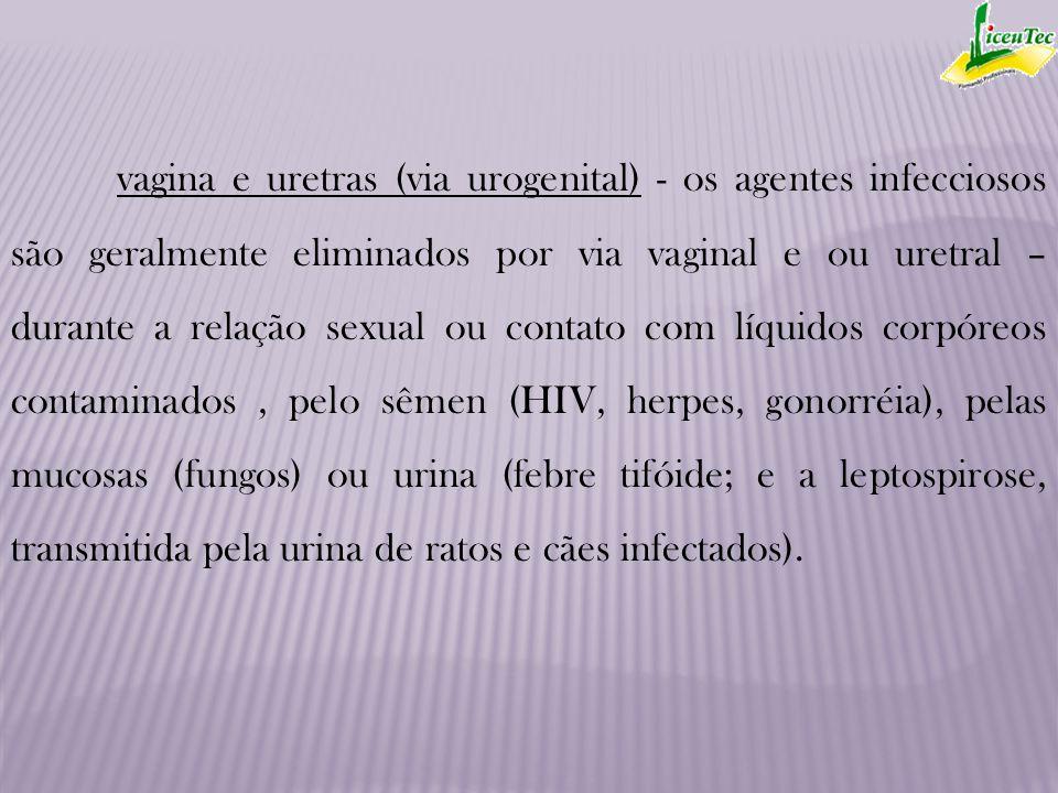 vagina e uretras (via urogenital) - os agentes infecciosos são geralmente eliminados por via vaginal e ou uretral – durante a relação sexual ou contato com líquidos corpóreos contaminados , pelo sêmen (HIV, herpes, gonorréia), pelas mucosas (fungos) ou urina (febre tifóide; e a leptospirose, transmitida pela urina de ratos e cães infectados).