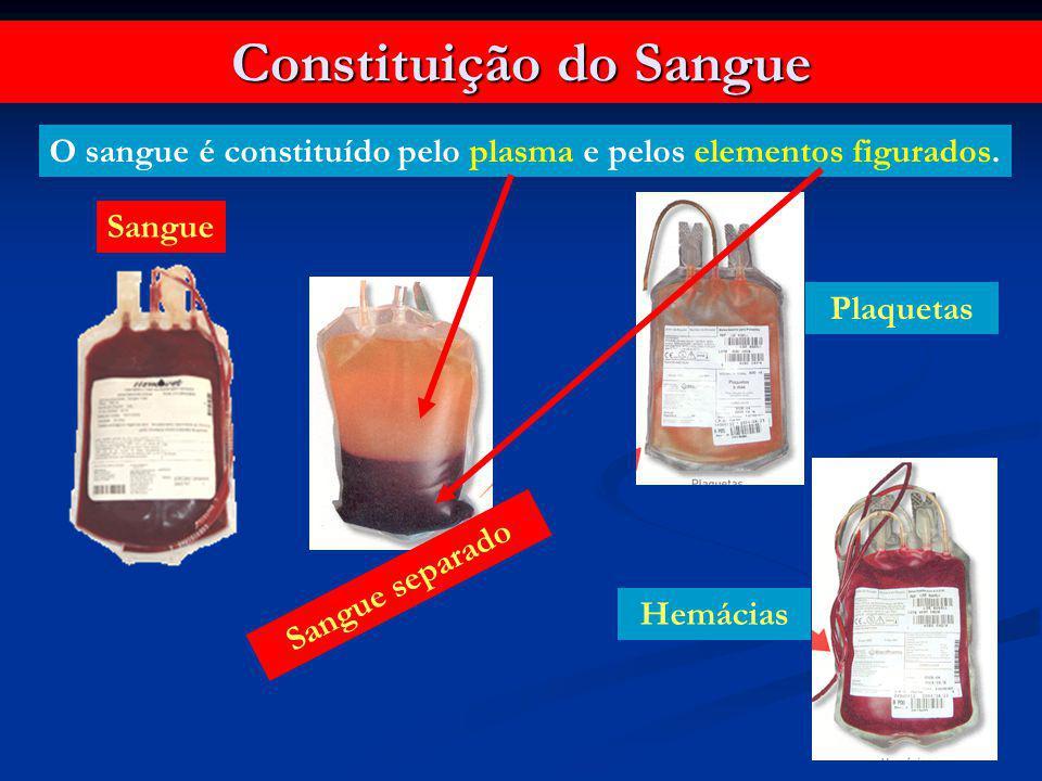 Constituição do Sangue