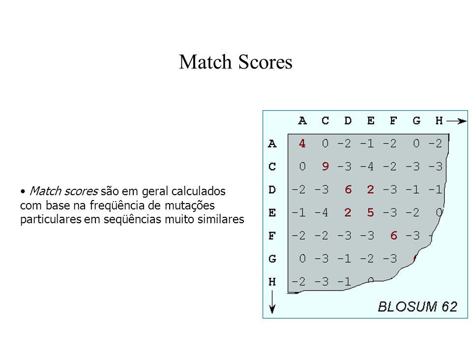 Match Scores Match scores são em geral calculados com base na freqüência de mutações particulares em seqüências muito similares.