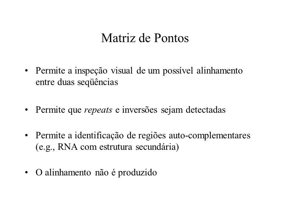 Matriz de Pontos Permite a inspeção visual de um possível alinhamento entre duas seqüências. Permite que repeats e inversões sejam detectadas.