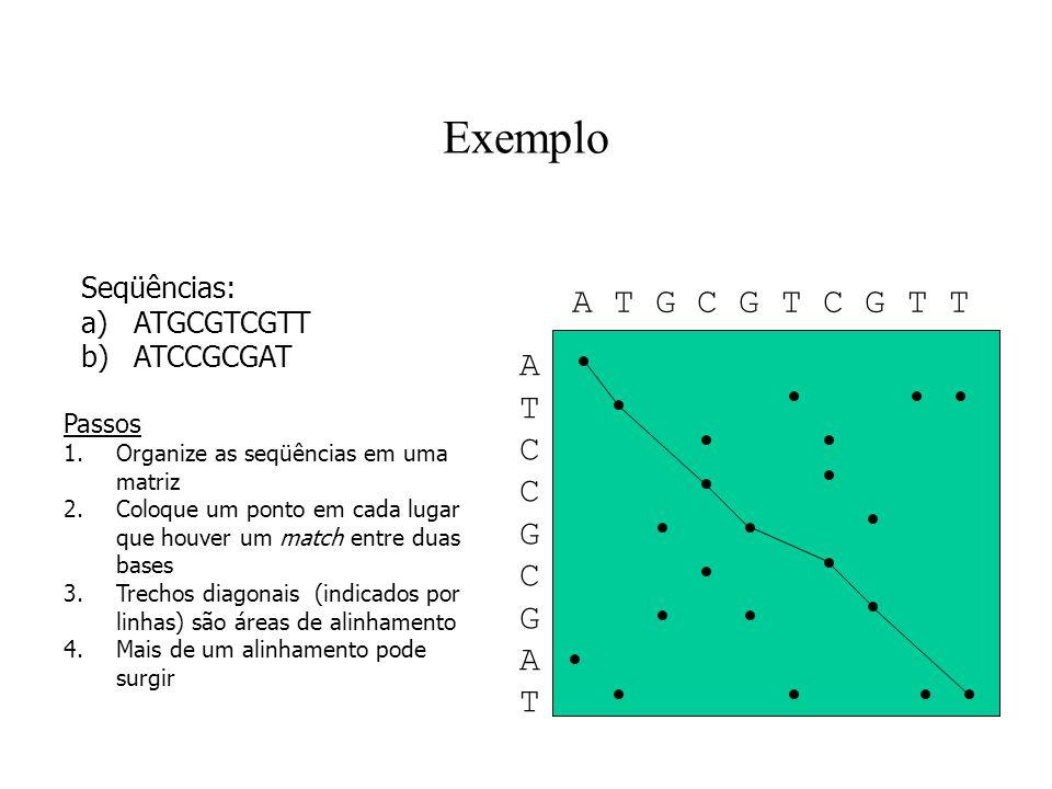 Exemplo A T G C G T C G T T A T C G Seqüências: ATGCGTCGTT ATCCGCGAT