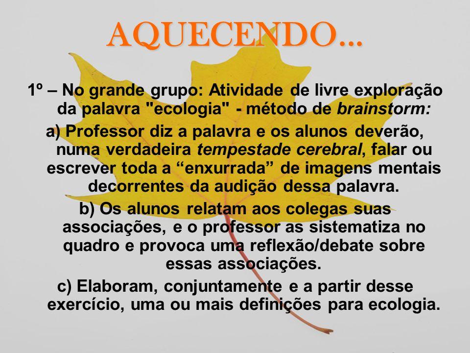 AQUECENDO... 1º – No grande grupo: Atividade de livre exploração da palavra ecologia - método de brainstorm: