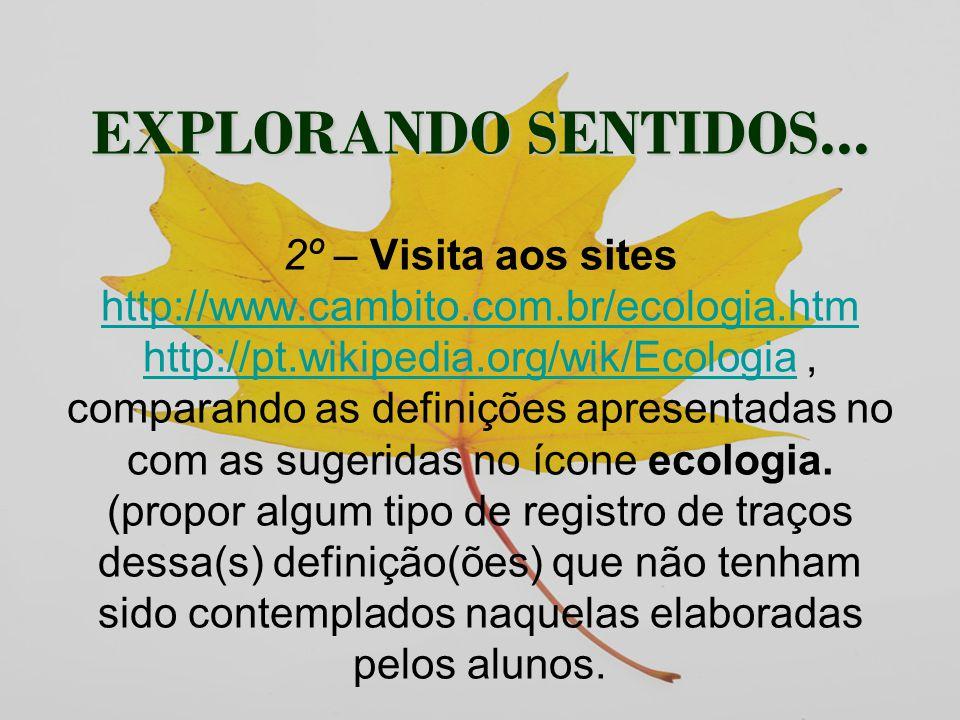 EXPLORANDO SENTIDOS. 2º – Visita aos sites http://www. cambito. com