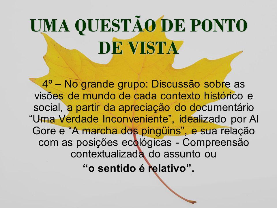 UMA QUESTÃO DE PONTO DE VISTA