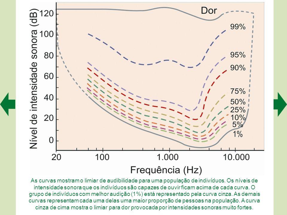 As curvas mostram o limiar de audibilidade para uma população de indivíduos. Os níveis de intensidade sonora que os indivíduos são capazes de ouvir ficam acima de cada curva. O