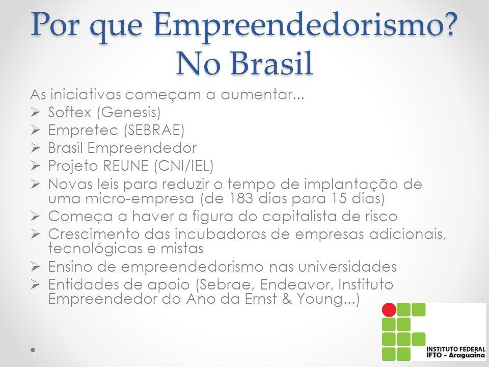 Por que Empreendedorismo No Brasil